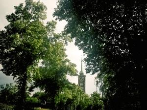 kirche-zwische-baeumen